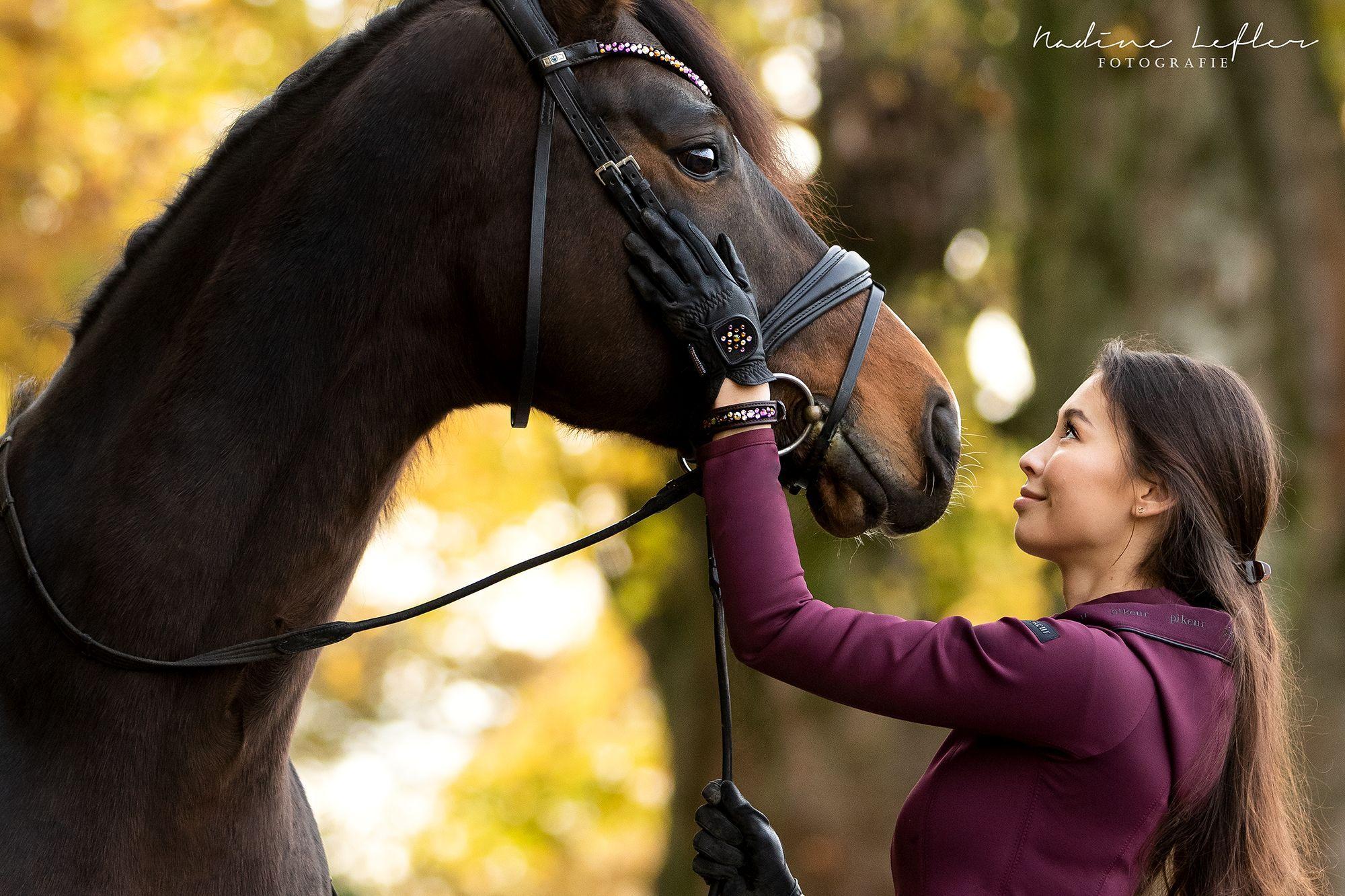 Feiner Prinz By Anna Den Inlay Swing Pferde Prinz Anna