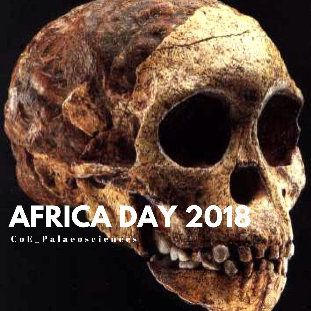Twitter Africa day, Human evolution, Archaeology