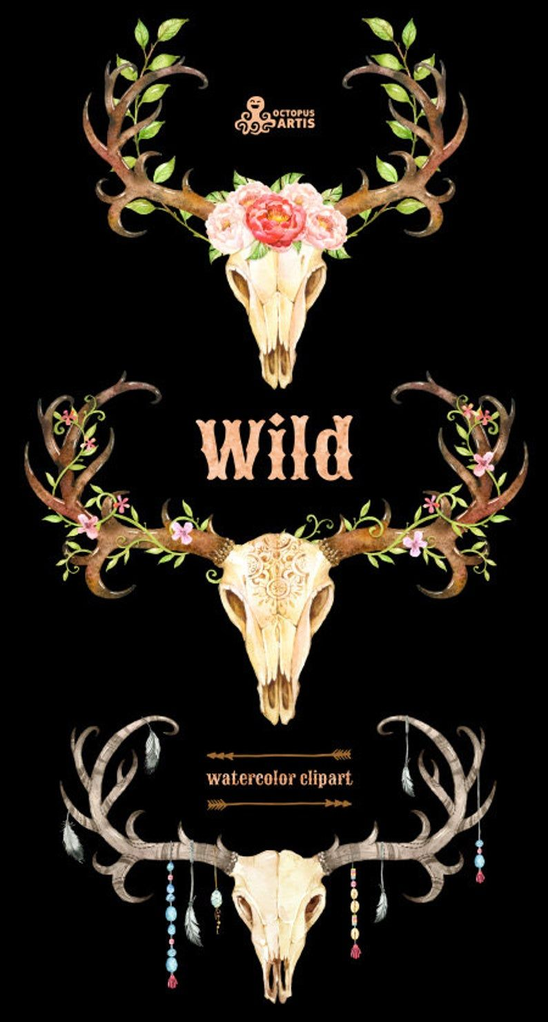 Peony Watercolor Flower Tattoos: Wild. 3 Watercolor Skulls With Antlers, Hand Painted