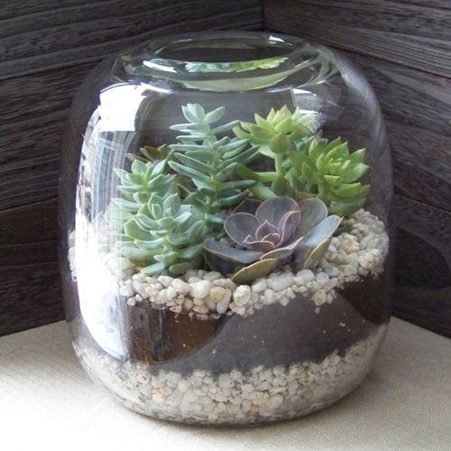 Photo of Floral Verde LLC-Succulent Terrarium Tutorial