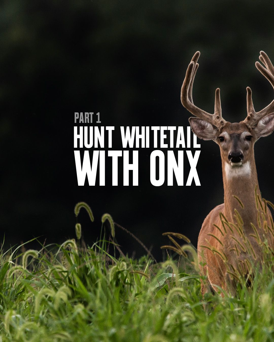 How to Hunt Whitetail Deer Using the onX Hunt App Part 1