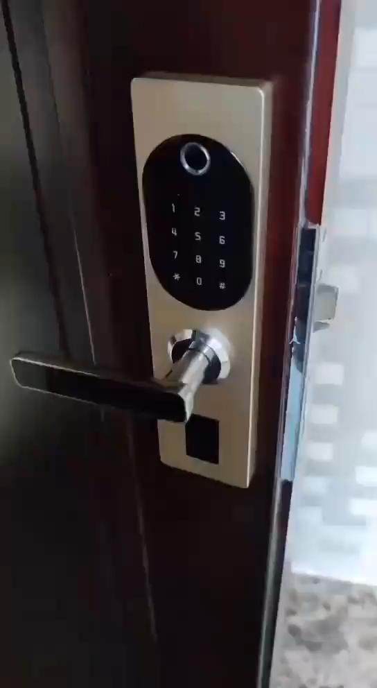 Fingerprint Keypad Lock Video In 2020 Smart Home Digital Door Lock Keypad Lock