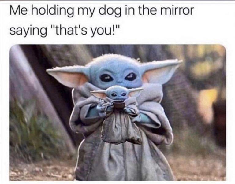 40 More Baby Yoda Memes Because Posting Them Is The Way Yoda Meme Yoda Emoji Funny Babies
