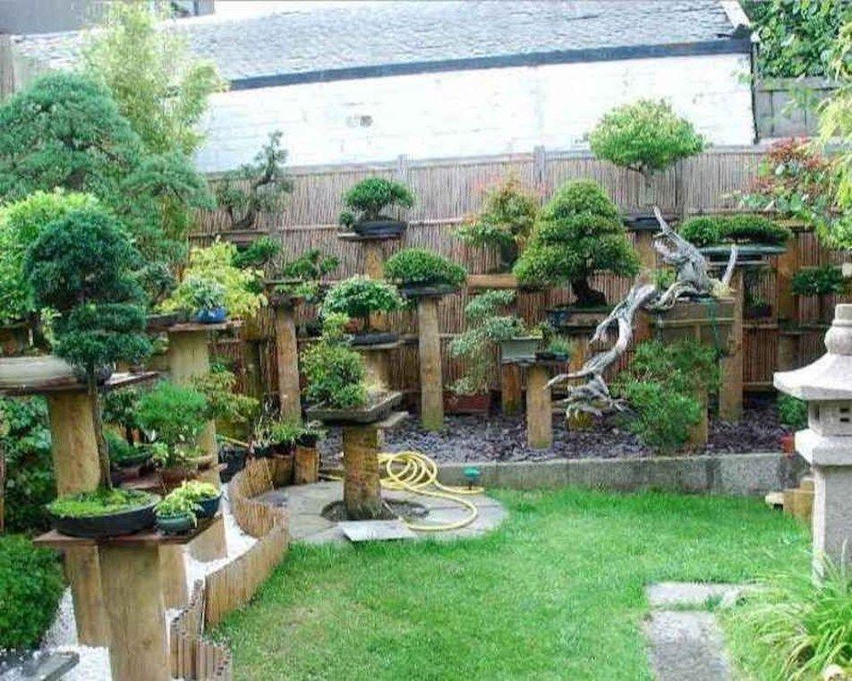 44 Stunning Bonsai Garden Ideas Best For Outdoor Decor