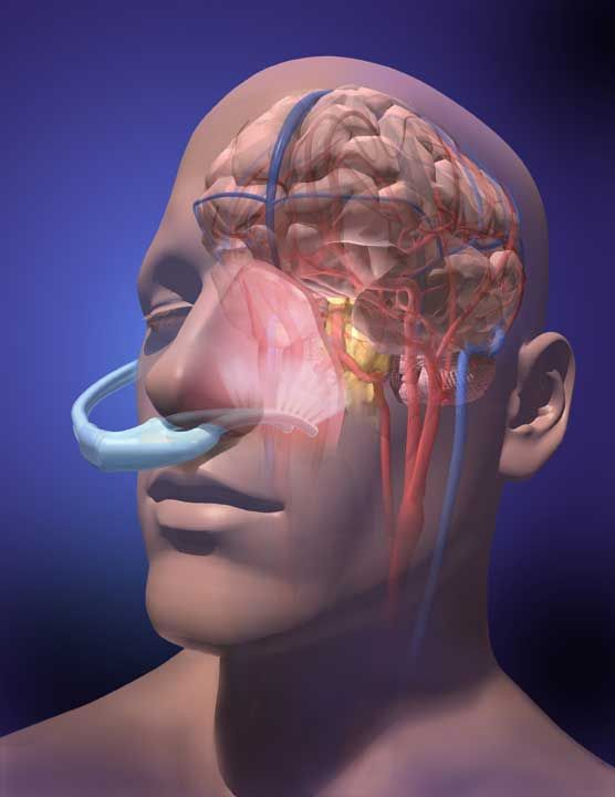 Lnda S Nye Product Illustration Illustration Brain Damage Artwork