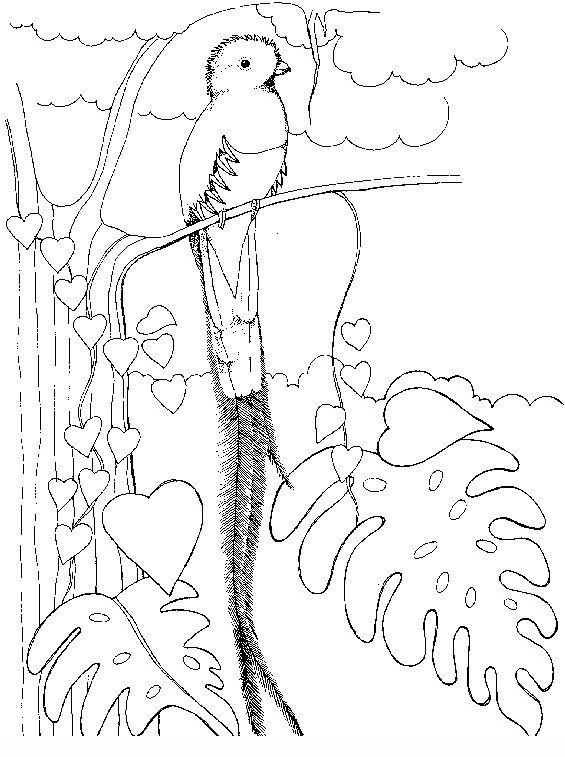 Birds 3 Teenagers Coloring Pages Flag Coloring Pages Coloring