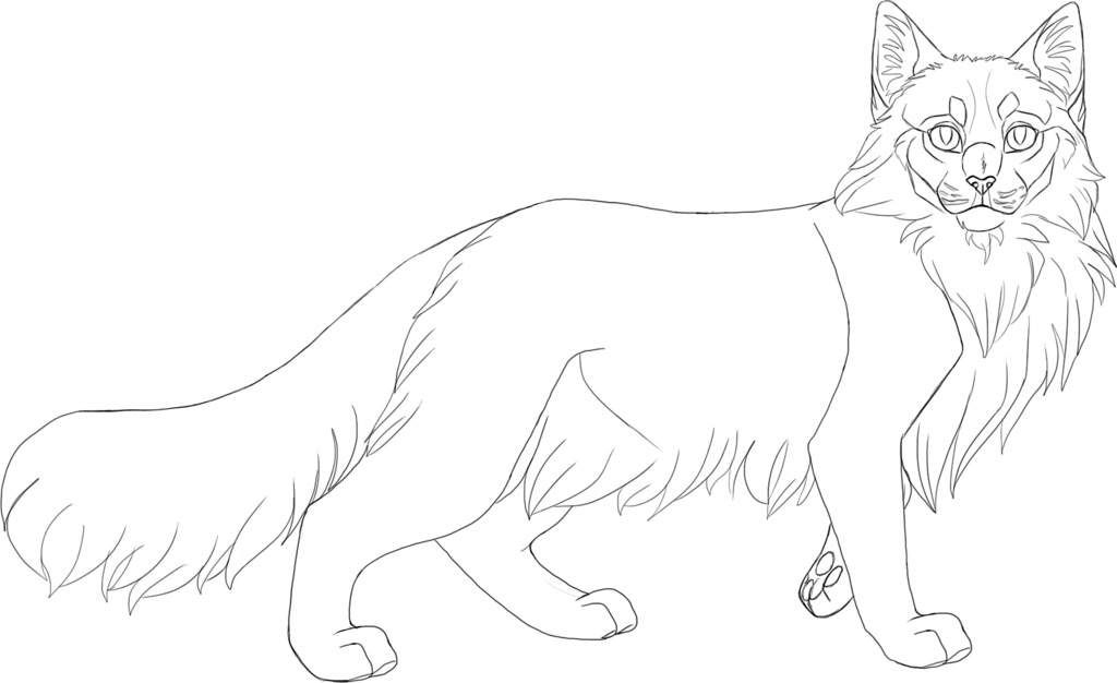 adoptable bases  warrior cat drawings hand art drawing