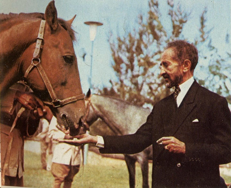 Horses Haile Selassie Lion Of Judah African Royalty