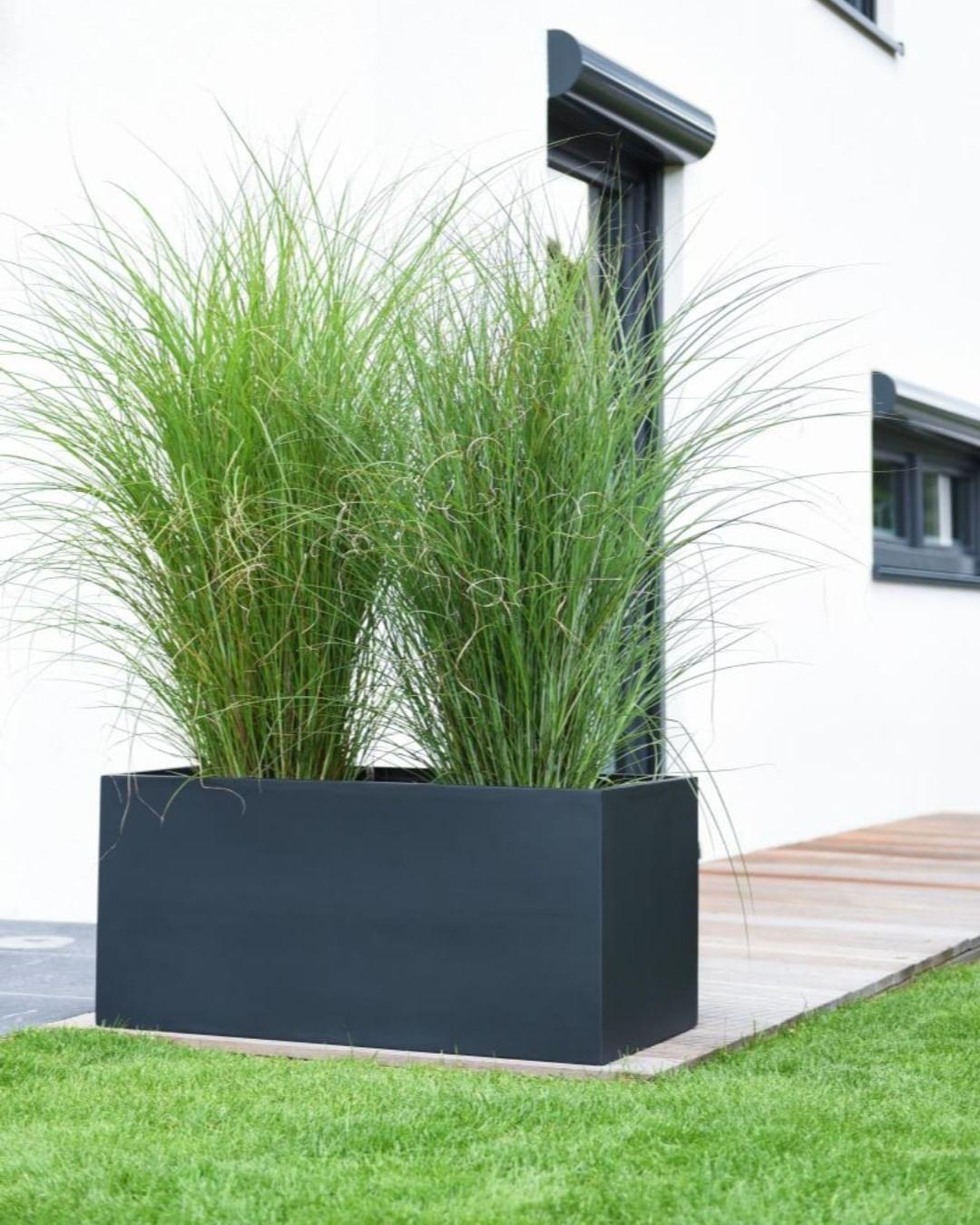 Die Pflanztroge Der Serie Maxi Eignen Sich Sehr Gut Zur Gestaltung