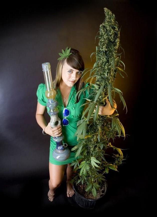 baby weed girl | WEEDsss | Pinterest | Cannabis, Weed and