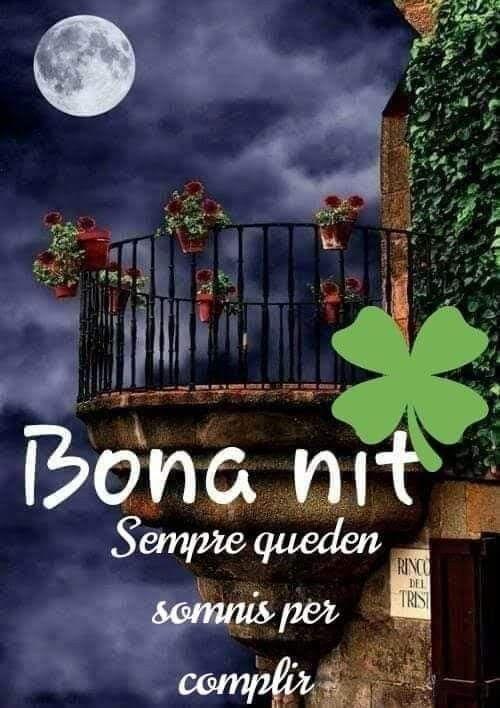 Pin De Horténsia Bove En Imatges Bona Nit Fotos Buenas Noches Saludos De Buenas Noches Mensajes De Buenas Noches