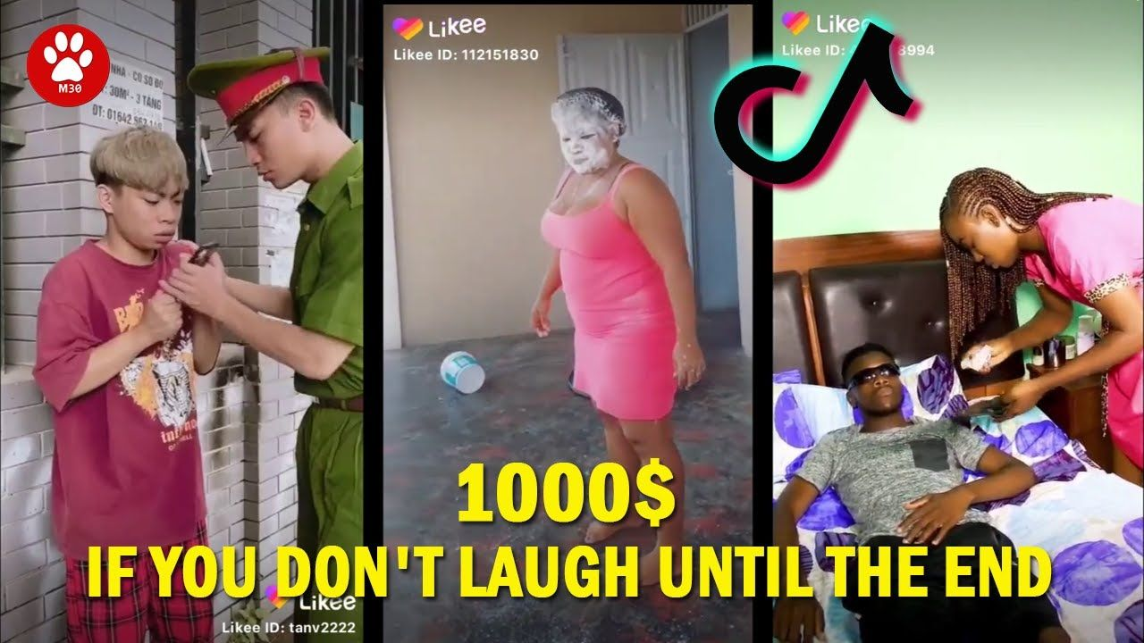 Funny Video Try Not To Laugh Impossible Clean Funny Tik Tok Laughing C Try Not To Laugh Funny Gif Clean Humor