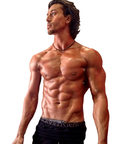 Bollywood Actor Png Download 2020 Your Png Png Images Background Stock Bollywood Actors Tiger Shroff Png