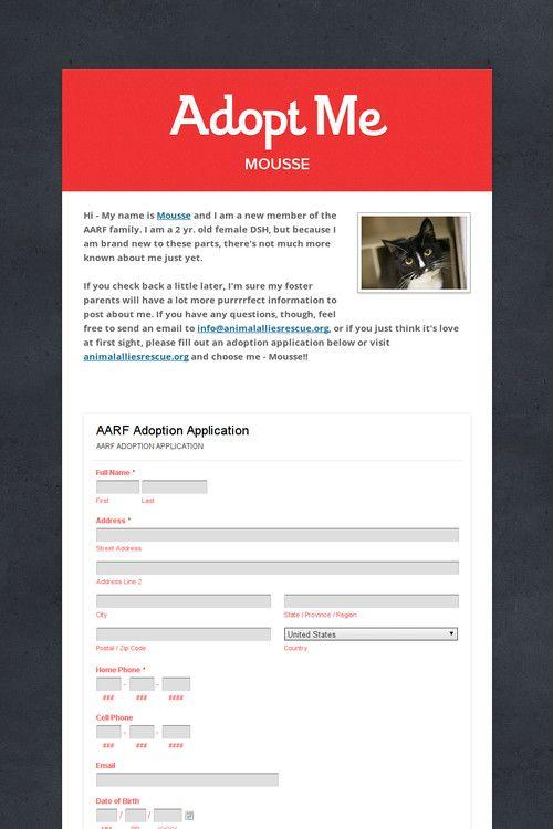 Adopt Me Mousse Adoption Animal Rescue Ideas Word Out