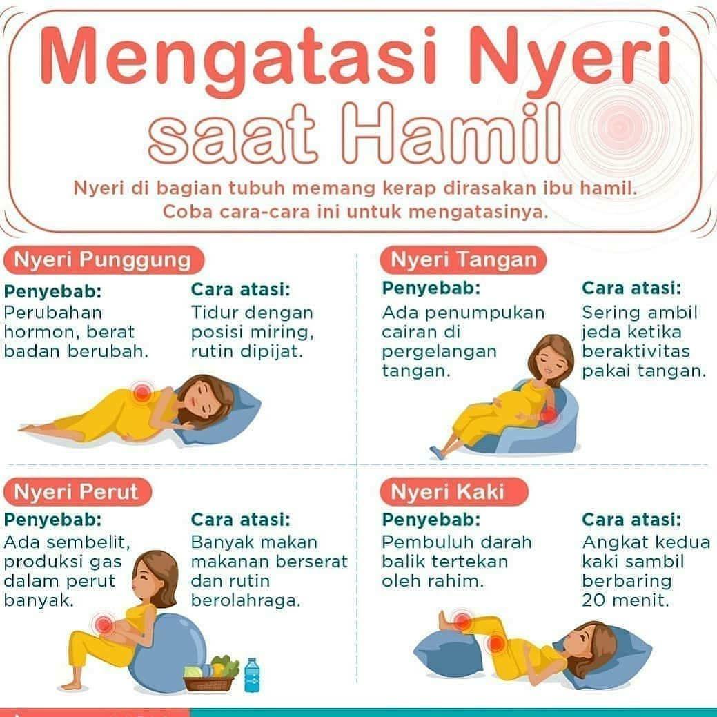 Parenting Hamil Kesehatan Anak Kehamilan Sehat
