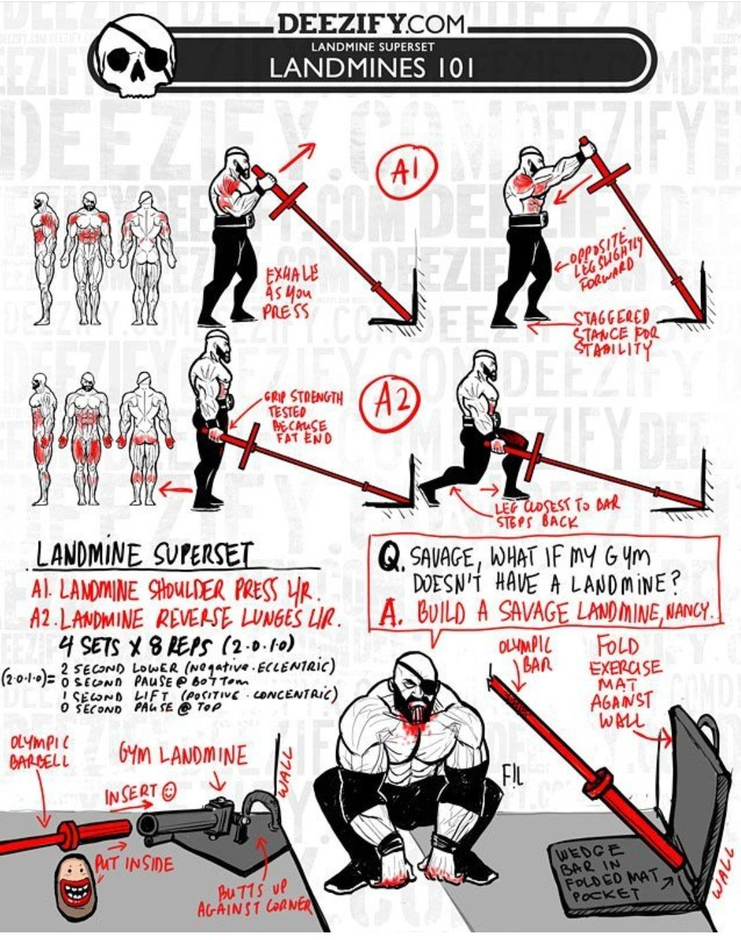 Pin by Jim Artman on Land mine workout Biceps workout