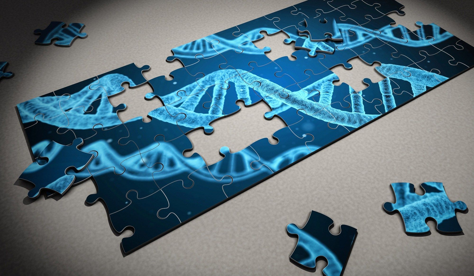 Heredity And Our Fascination With It
