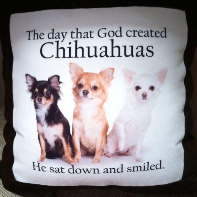 My favorite pillow.