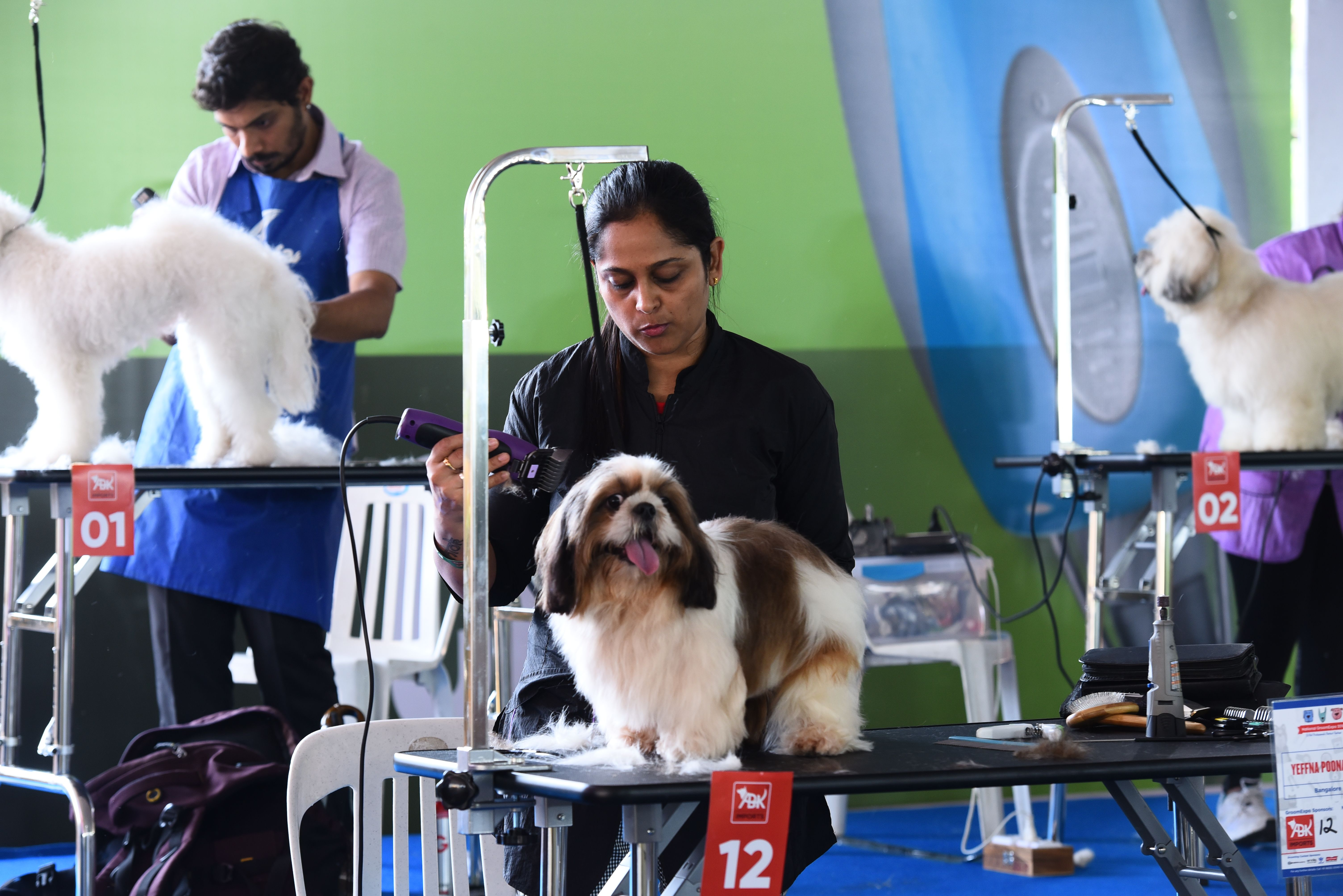 Andis Provide the best dog clippers for home use proudly