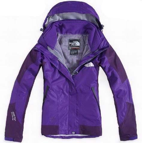 Womens The North Face Gore Tex Performance Shell Purple