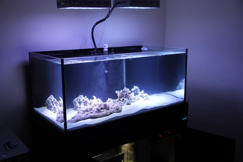 100 gallon aquarium dimensions aquarium ideas for 100 gallon fish tank stand