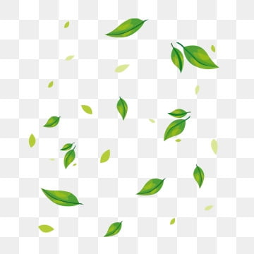 Plant Fall Leaves Floating Atmosphere Decoration Available For Commercial Use Plant Leaves Fall Png Transparent Clipart Image And Psd File For Free Download