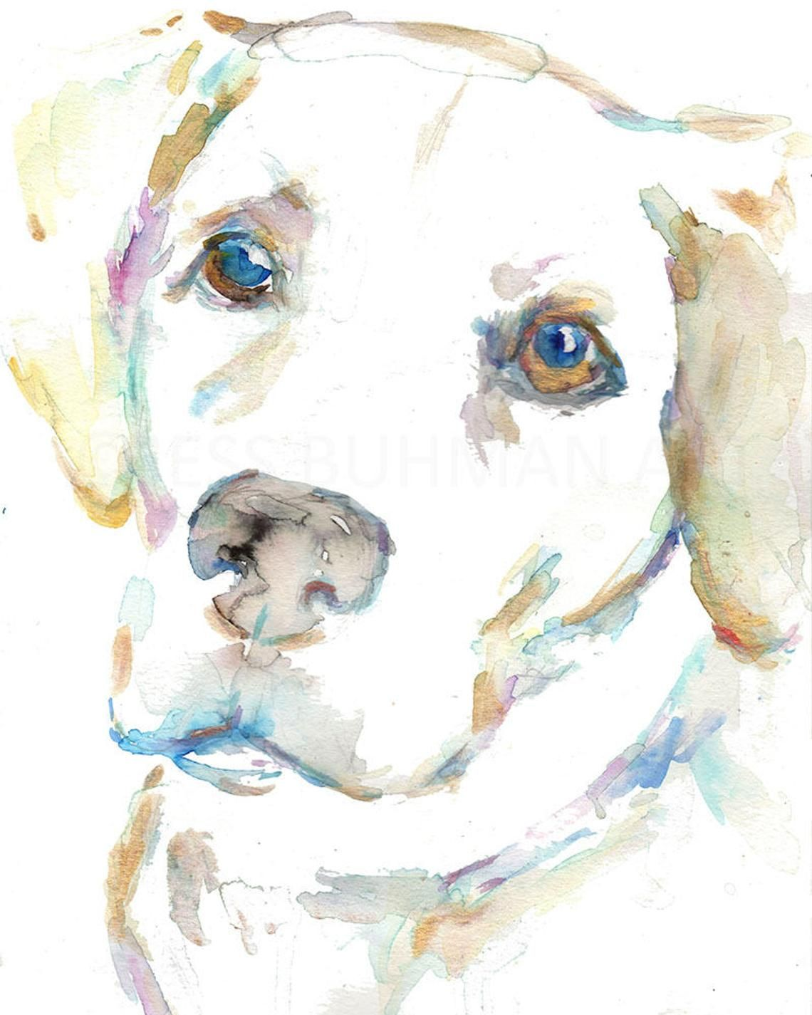 Watercolor Lab Print Macey By Jess Buhman Print Of Labrador