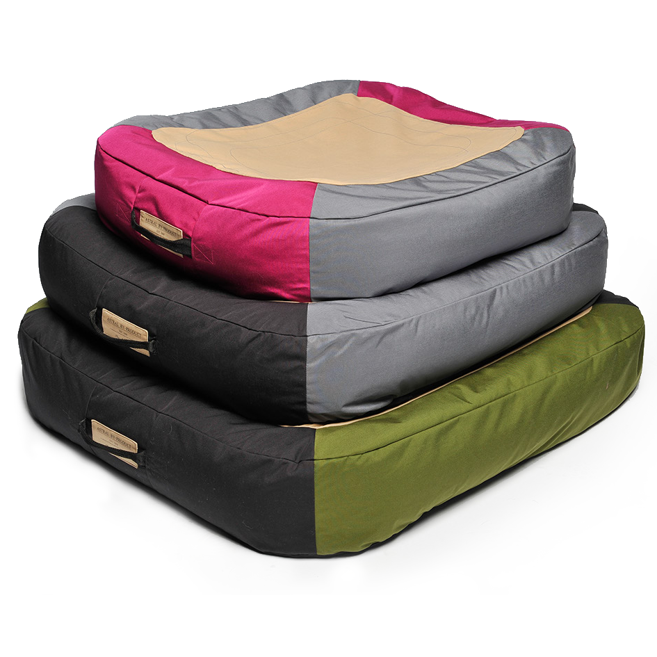 AstroPad floating dog bed great for summer camping