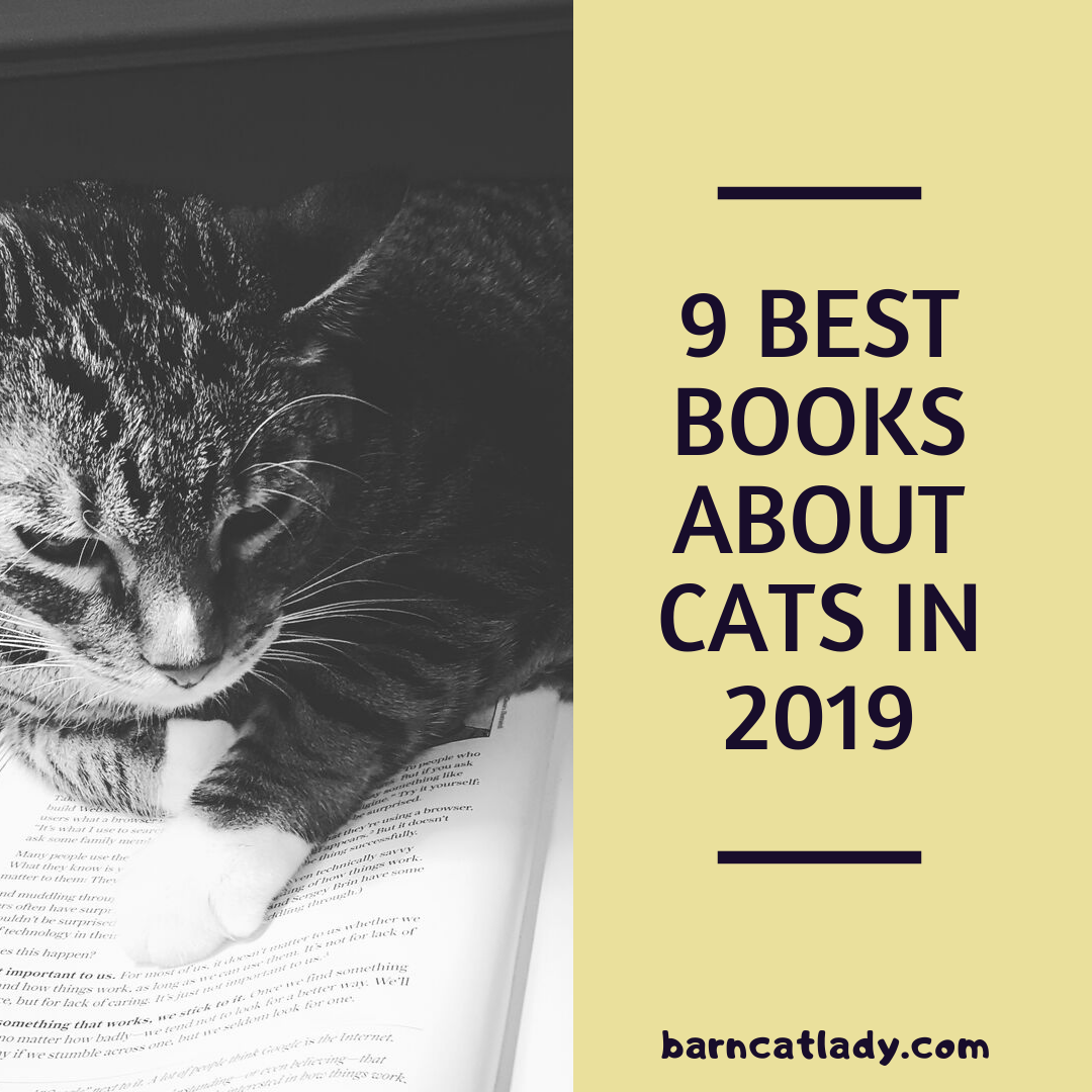 Best Books About Cats For Book Lovers Or Cat Lovers Https Barncatlady Com Best Books About Cats Barncatlady Books In 2020 Cats Good Books Kitten Rescue Stories