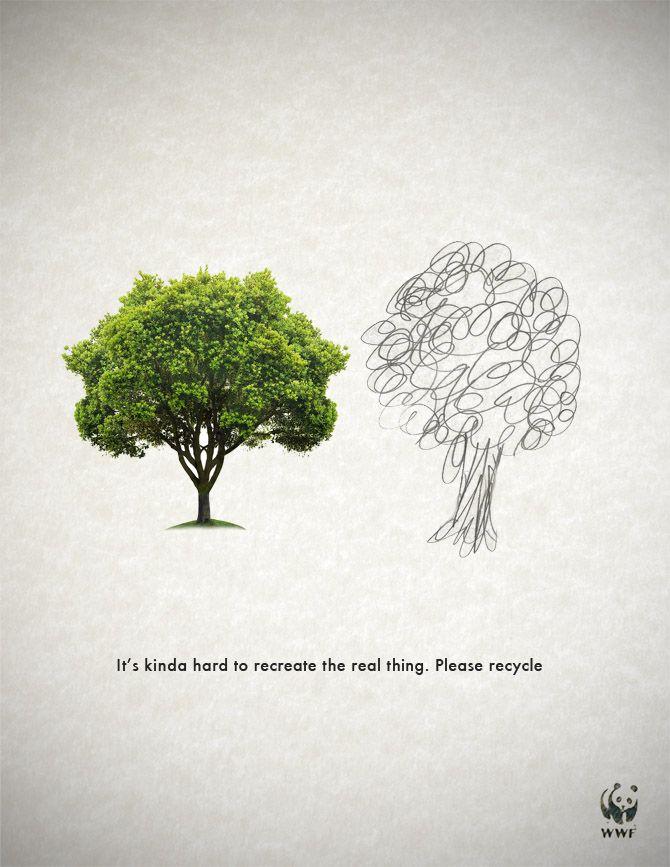 Image result for deforestation advert