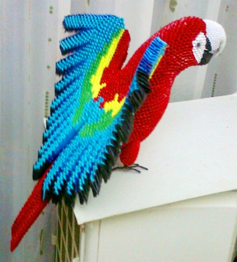 macaw album mohammad nofal 3d origami art origami 3d pinterest origami origami. Black Bedroom Furniture Sets. Home Design Ideas