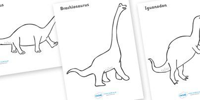 Dinosaurs Colouring Sheets - education, home school, free ...