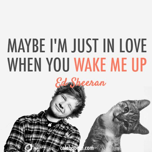 Ed Sheeran Quotes | Ed Sheeran Quote Collection: - Give Me Love - The A Team - Wake Me Up ...