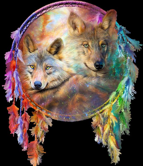 Loups & attrape-rêves | Loups <3 | Pinterest | Loups, Indiens et ...