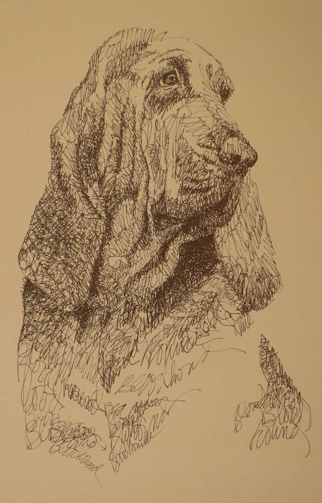 Dog art drawn entirely from the word Bloodhound. See all