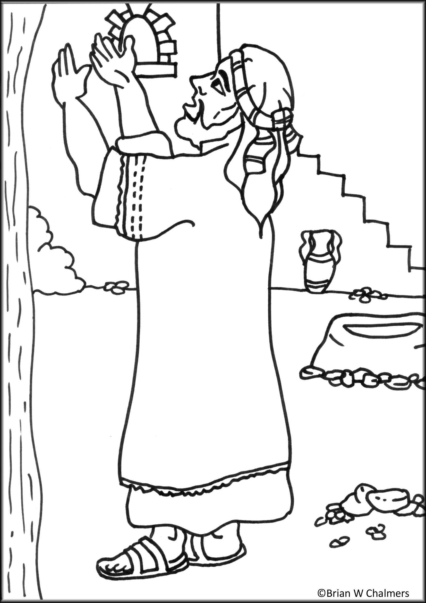 Zacchaeus Flip Chart Ebibleteacher Mcoloring Coloring Pages Coloring Pages Inspirational Sunday School Coloring Pages [ 2339 x 1654 Pixel ]