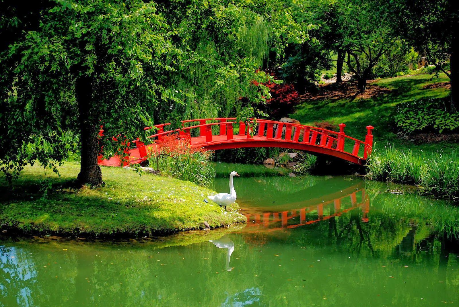 Chinese Bridge Wallpaper