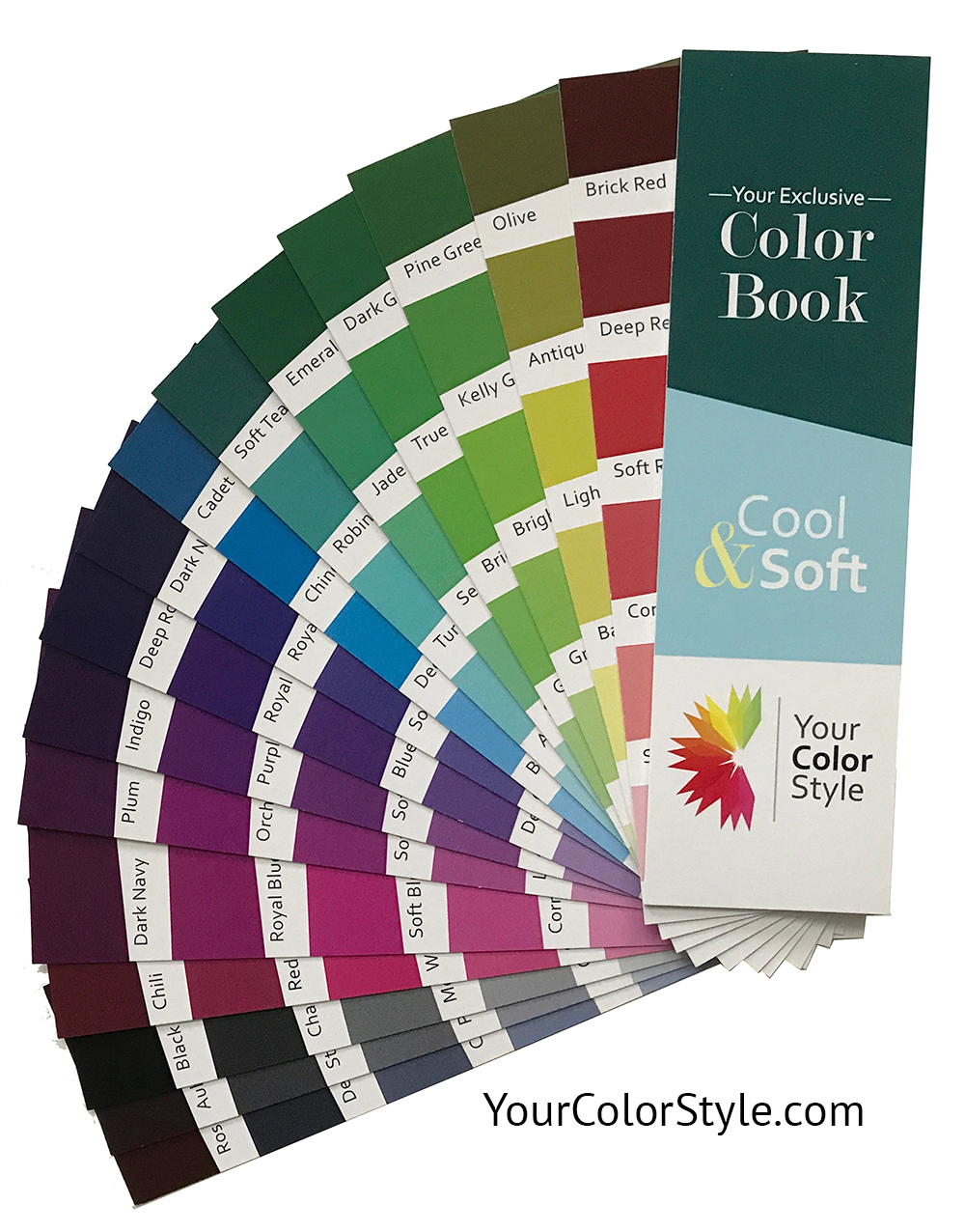 This Color Book Is For You If You Have Cool Undertones You Can Wear Muted Colors Soft Summer Palette Cool Winter Color Palette Winter Color Palette