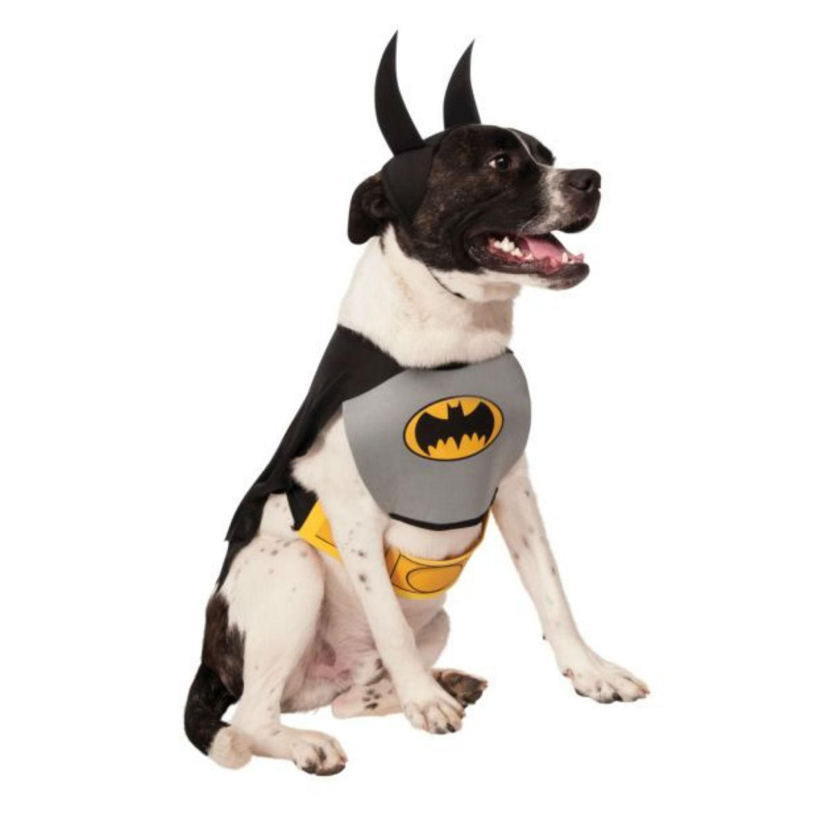 Classic Batman Dog Halloween Costume Gray Pet Costumes Batman