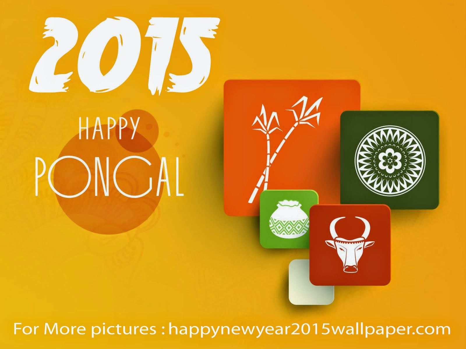 Happy Pongal Facebook timeline images Happy pongal