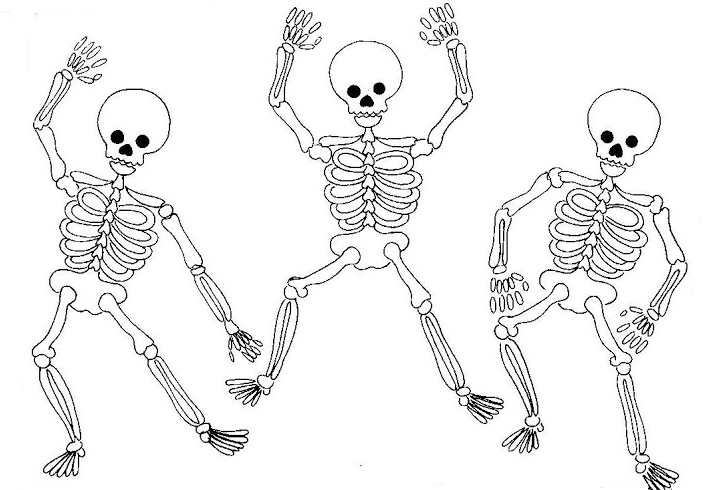Articulaciones Para Colorear Para Ninos Buscar Con Google Articulaciones Del Cuerpo Humano Esqueleto Dibujo Dibujos