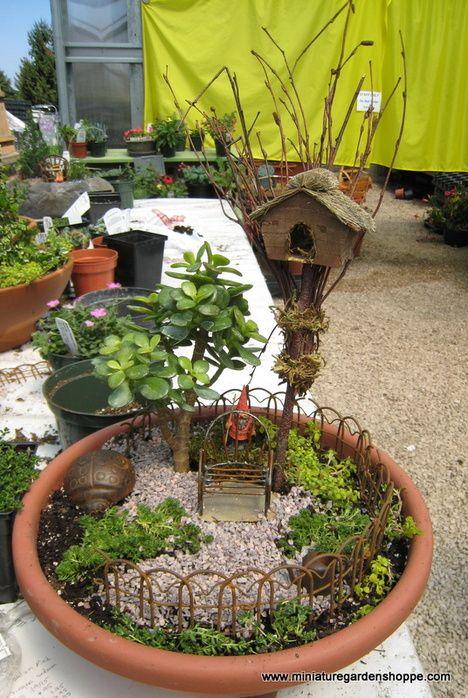 Mini Gnome Garden Or Fairy Garden