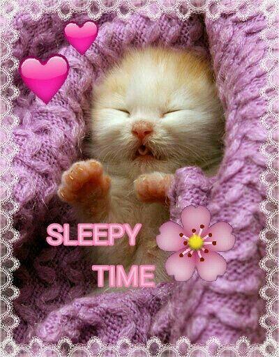 Sleepy time