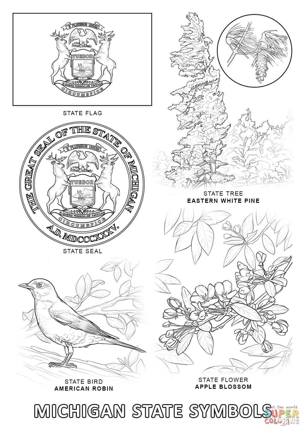 Michigan State Symbols Super Coloring Flag Coloring Pages