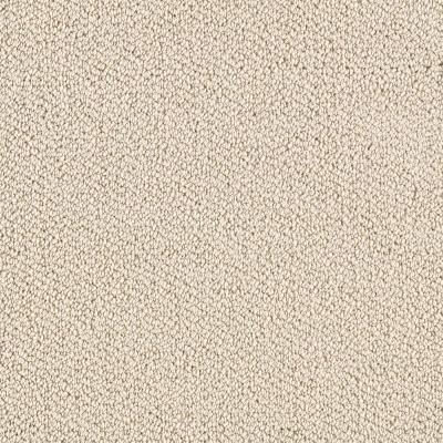 Lifeproof Lower Treasure Color Dreamland 12 Ft Carpet 0547d 29 12 The Home Depot Carpet Samples Patterned Carpet Carpet Trends