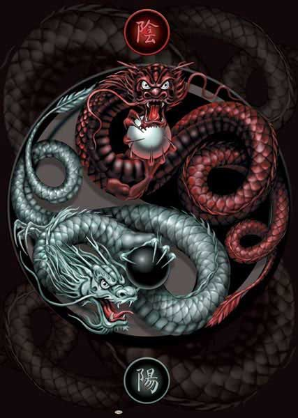 Yin Yang - Fantasy pictures and fantasy images Dragon | Ink ...