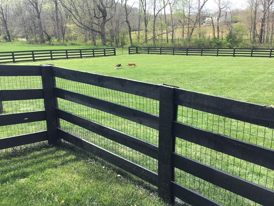 Paddock Horse Board Pasture Fence Designs Fence Ideal Fences For Pet Containment Horse Fences Dog Fences Wood Fenc Diy Fence Backyard Fences Fence Design
