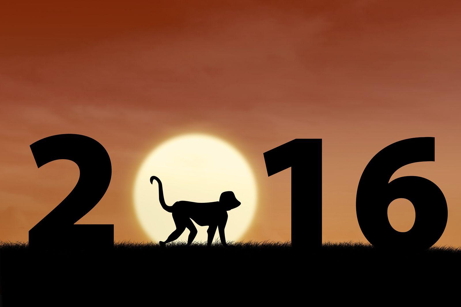 2016 The Year of the Monkey Year of the monkey, Chinese