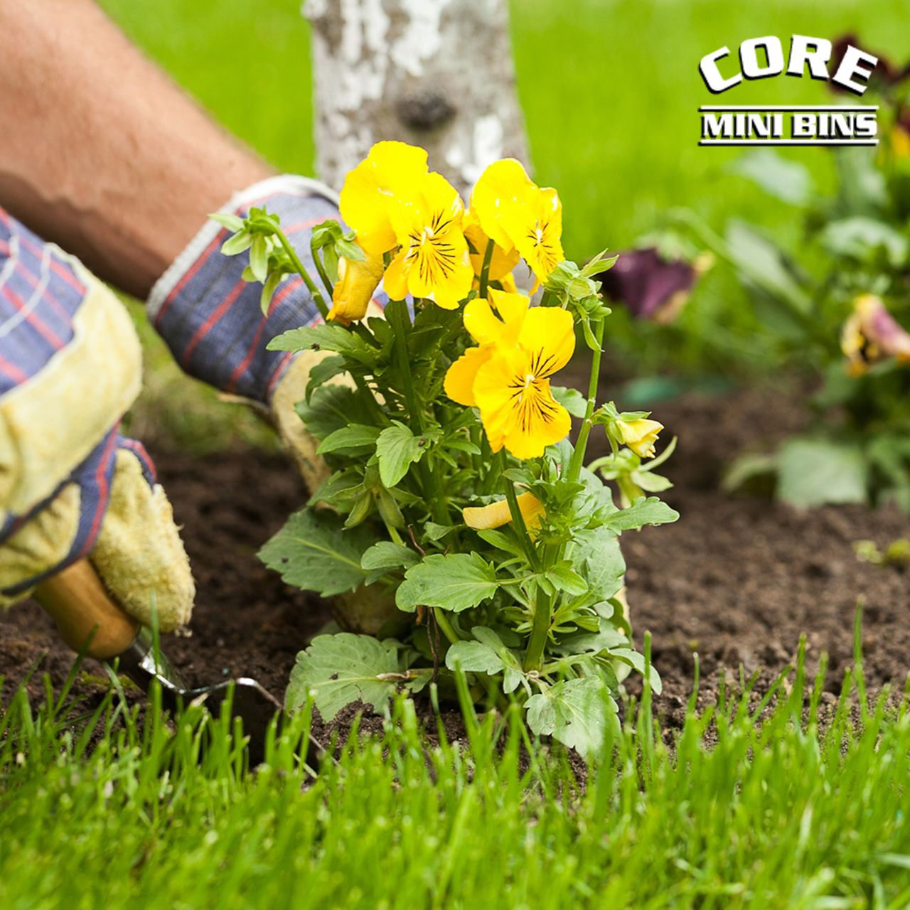 For your next garden or landscaping project, contact Core