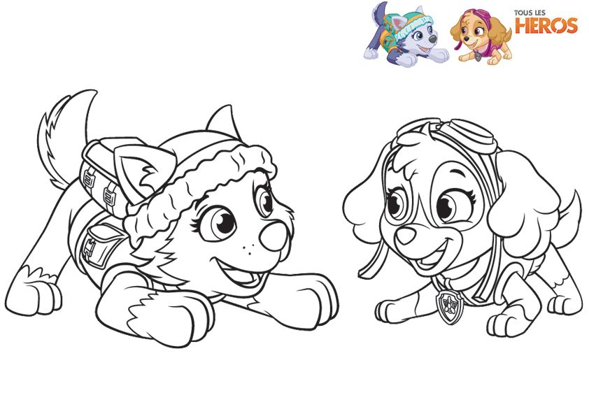 Paw Patrol Coloring, Dog Coloring Page Et Paw